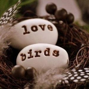 птицы в свадебном декоре