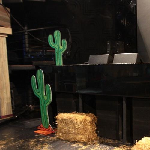 аренда пластикового кактуса