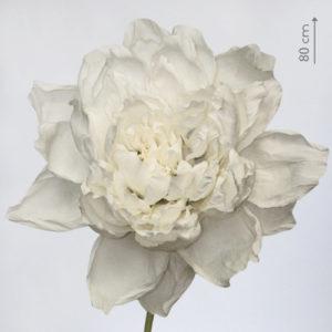 Огромный цветок из бумаги в аренду
