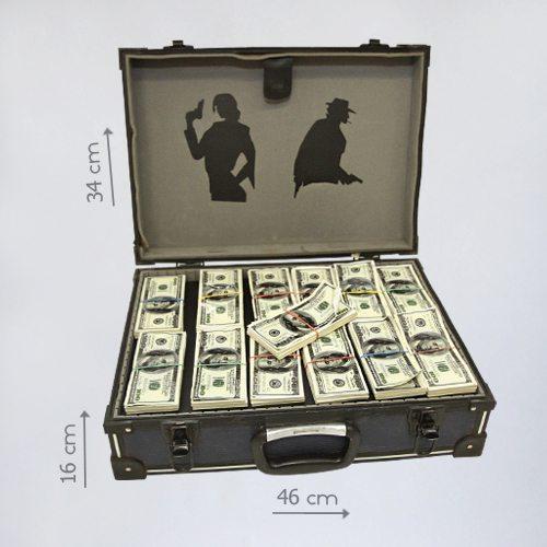 бутафорский чемодан денег