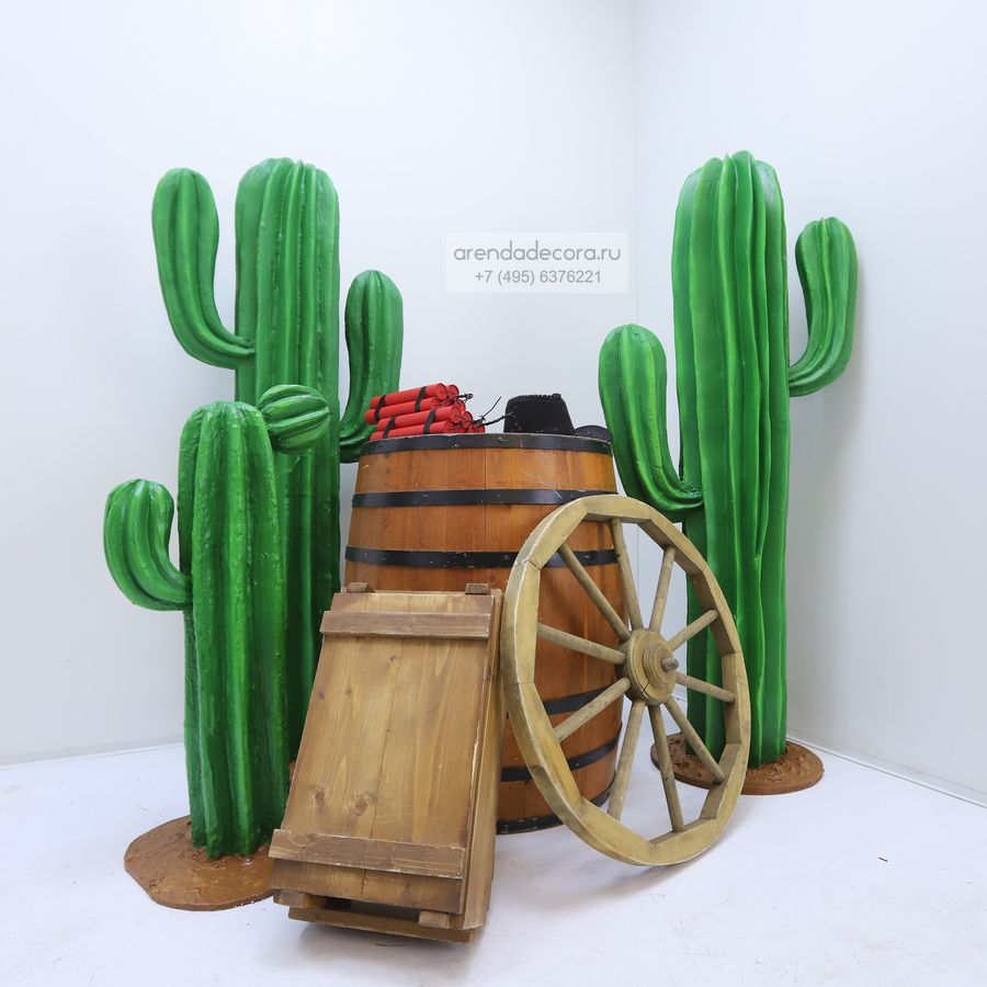 аренда пенопластовых кактусов