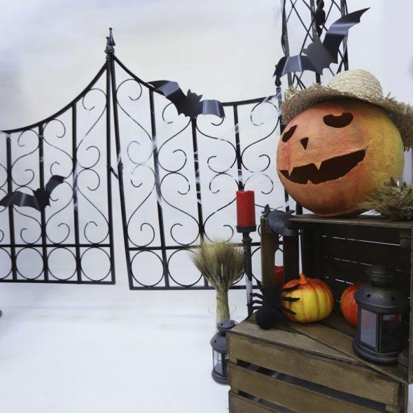"""Фотозона """"Врата Хэллоуина"""""""